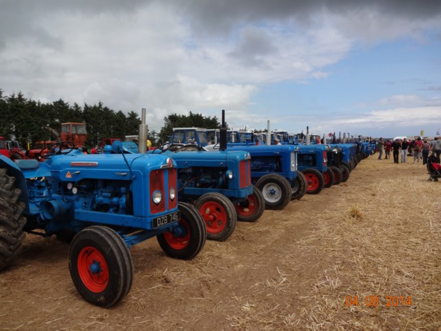 Ford-line-up1
